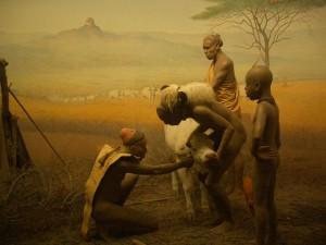 800px-Day117anaturalhistoryzi