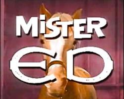 250px-Mister_Ed