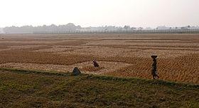 280px-Indo-Bangladeshi_Barrier