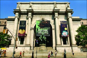 800px-American_Museum_Natural_History_3792476001_6cab532900