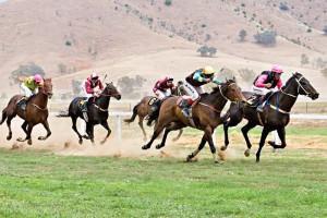 800px-Tambo_valley_races_2006_edit