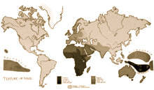 220px-PSM_V52_D323_Global_hair_texture_map