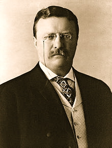 220px-President_Theodore_Roosevelt_1904