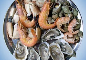 History of Seafood