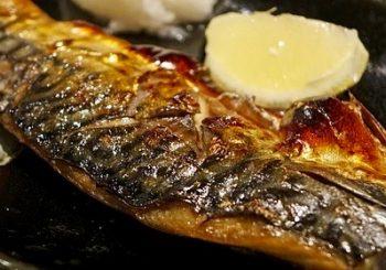 15 Health Benefits of Mackerel