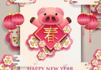 The year of the PIG 2019: Chinese horoscope for the year 2019